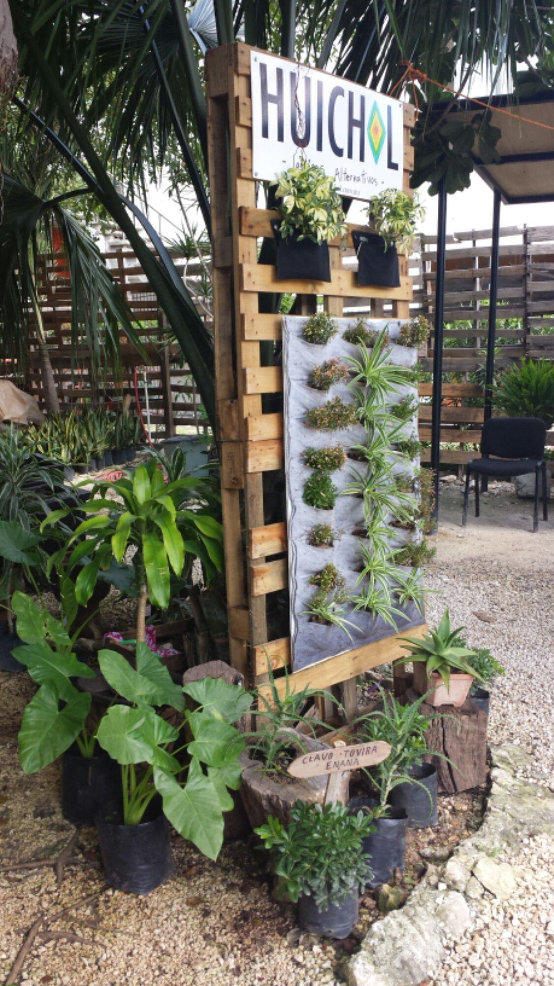 exhibidor huichol jardines verticales cancun vivero gaia